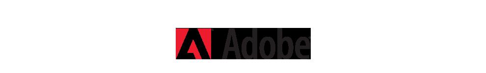 Adobe B2B iPad App